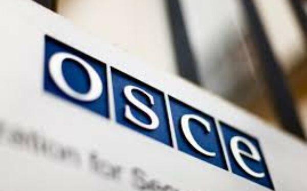 Фундація «Відкритий Діалог» в ОБСЄ дискутувала про права людини на пострадянському просторі